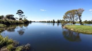 Calm waters on Kaituna River.
