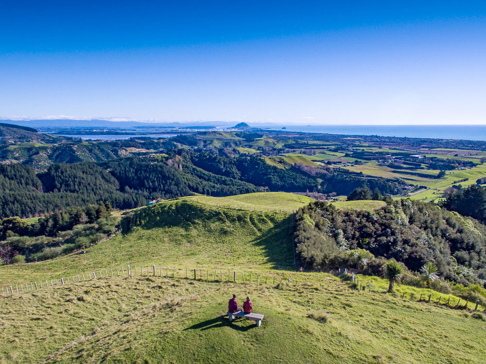 Papamoa Hills Walk